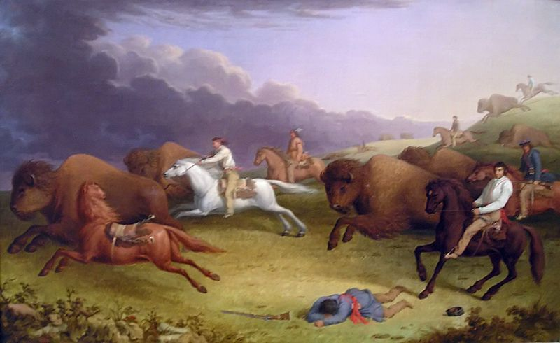Metis Buffalo Hunt by Paul Kane 1846